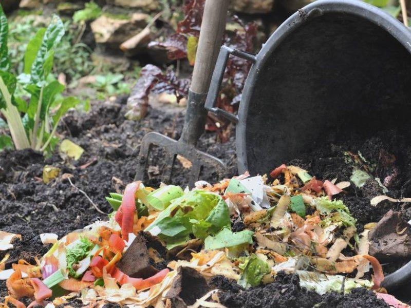 domáci kompost