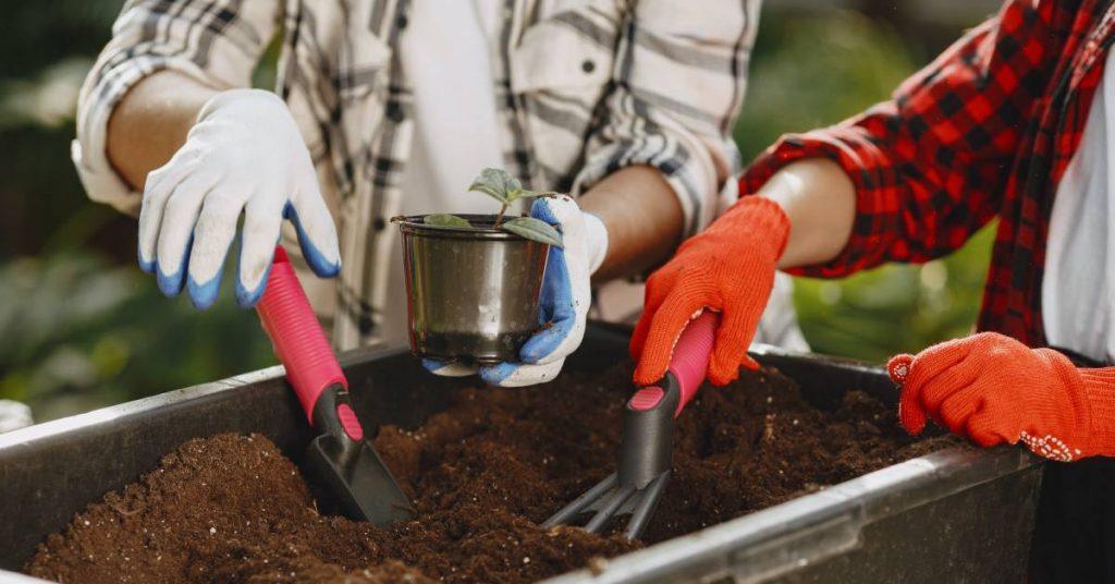 využitie kompostu